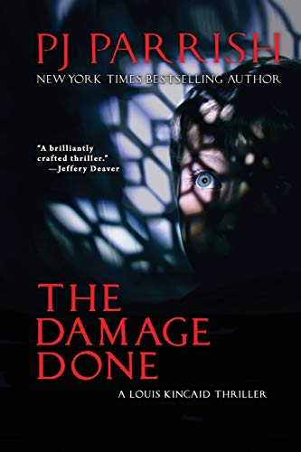 The Damage Done: A Louis Kincaid Thriller #12 (Louis Kincaid Mystery Series)