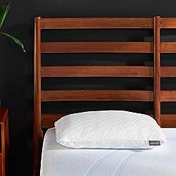 TempurPedic Adapt ProLo Pillow + Cooling Queen Pillow