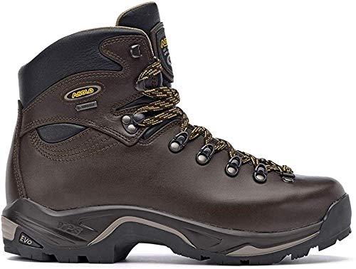 Asolo Mens TPS 520 GV Evo Boots Chestnut Size 10