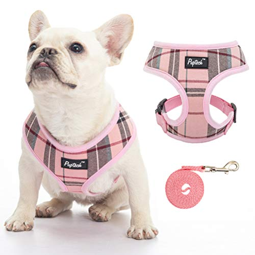 Harness Leashes for Small Dogs