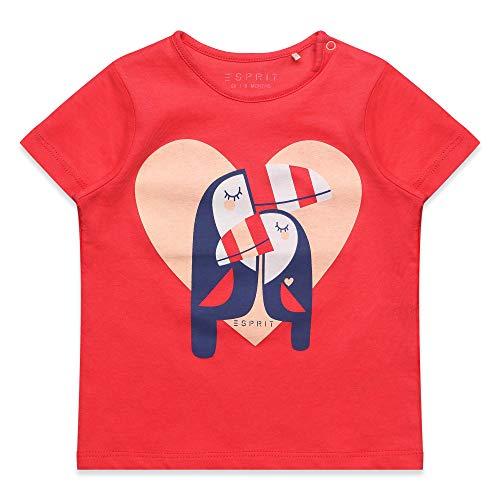 ESPRIT KIDS Baby-Mädchen SS T-Shirt, Rot (Watermelon 324), (Herstellergröße: 62)