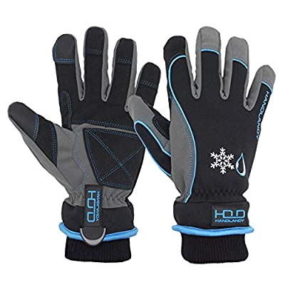 Waterproof Insulated Work Gloves? Thermal Winter Gloves for Men Women Touch Screen, Warm Ski Snowboard Cold Weather Gloves (Large, Blue)