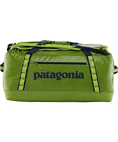 Patagonia Black Hole 70L Duffel Bag Peppergrass Green