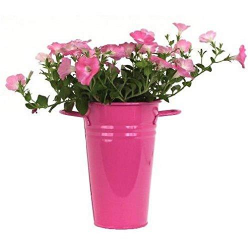 Houston International 8300E HPK 7-Inch Steel Vase, Hot Pink