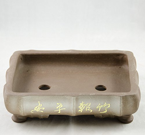 Etched Rectangular Bamboo-Shaped Yixing Zisha Bonsai Pot 10'x 7.5'x 2.5'