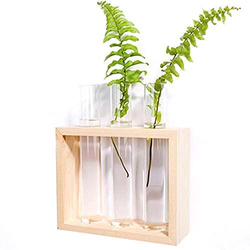 AEIMI Jarrón de cristal para colgar en la pared, moderno jarrón de...