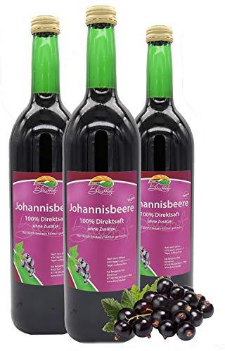 Bleichhof Schwarzer Johannisbeersaft - 100% Direktsaft, vegan, OHNE Zuckerzusatz, 3er Pack (3x 0,72l)