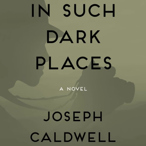 In Such Dark Places audiobook cover art