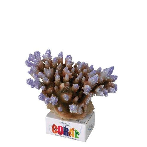Aqua Della 234-431269 Aquariumdekoration Coral-Module Acropora, lila