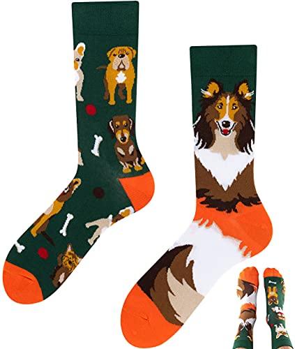 TODO Colours Lustige Socken mit Motiv - Mehrfarbige, Bunte, Verrückte für die Lebensfreude (Dogs Life, numeric_39)