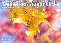 ZAUBER DES AUGENBLICKS Naturimpressionen (Wandkalender 2022 DIN A4 quer): Farbenfrohe Naturimpressionen erfreuen den Betrachter. (Monatskalender, 14 Seiten )