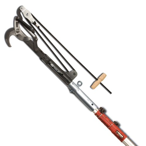 Why Should You Buy Barnel B555 7.5-19' Telescoping Pole with Heavy Duty Bypass Pruning Head