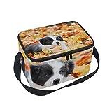 Lonchera aislante con diseño de bulldog francés para niños y mujeres, tela aluminio, Multi8., 10x7x6 in