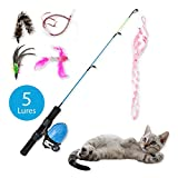 SunnyDays Cat Fishing Pole with Reel Toy Casts 10 Feet! Interactive Retractable Five Assorted Feather Mouse Bird Snake Lures Set