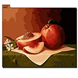 RONGFUQIANG painting by numbers DIY Digital photo frame mounted peach fruit oil painting photo wall art...