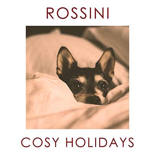 Rossini: Il barbiere di Siviglia / Act 2 - No.16 Terzetto: 'Ah! qual colpo inaspettato!'