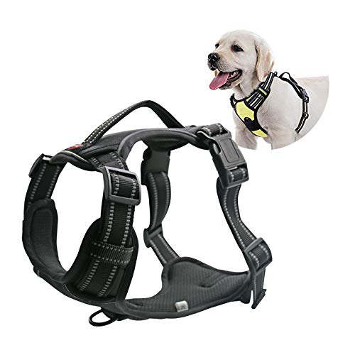 Stella-Lou Dog Harness No Pull , Adjustable , Reflective , no Choke , Dog Training Vest Heavy Duty Soft Oxford Material Easy on/Off 2 Leash Rings Small, Medium, Large, Extra Large.