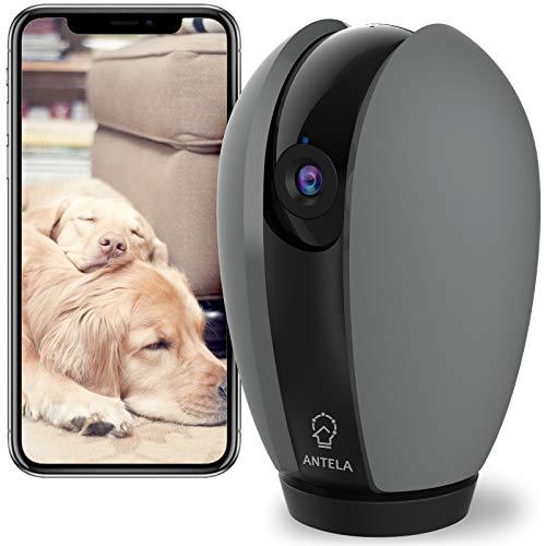 Überwachungskamera Innen 1080P, ANTELA WLAN IP Kamera, Kompatibel mit Alexa & Google Assistant, 360 Grad,Privatmodus, AI Personenerkennung, Geräuscherkennung, Zwei-Wege-Audio, Nachtsicht, Grau