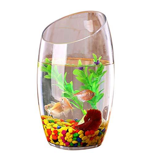 xinxinchaoshi Pecera Personalidad Creativa Cristal Transparente Pecera Acuario Planta hidropónica Goldfish Tank Acuario...