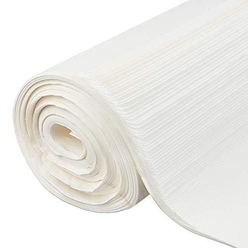 PandaHall 100 Blatt Xuan-Papier Ohne Gitter 11.5x54-Zoll-Chinesisch-Japanisch-Kalligraphie-Praxis Schreiben von Sumi-Zeichen-Reispapier Für Anfänger Und Fortgeschrittene Kalligraphie Und Malen