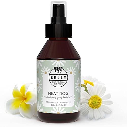 BELLY Veganes Hundeparfüm gegen Geruch - Fruchtiges Hunde Parfüm als Ergänzung zum Hundeshampoo, Hundedeo Geruchsentferner als sanftes Hundeparfum, Fellpflege Hunde Deo, Geruchsneutralisierer - 250ml