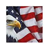 RAUP Satin Napkins Set of 6, North American Bald Eagle On Flag,Square Printed Party & Dinner Cloth Napkins,20' X 20'