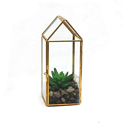 HO-TBO Pflanze Terrarium, Modernes Klarglas Geometrisches Terrarium Indoor Balkon Fensterbank Sukkulente Kakteen Farn Blumentopf Container Messing Gewächshäuser Gartenarbeit