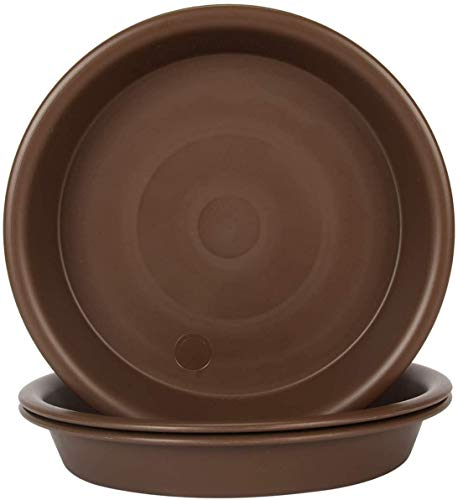 Grandisk - Plato para plantas, 25,4 cm, plástico interior y exterior, más duradero, bandeja de goteo de platillo, color marrón (10 pulgadas/25,4 cm 3 paquetes)