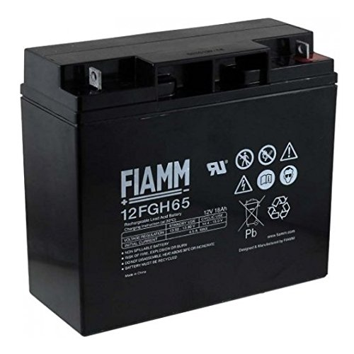 FIAMM 12FGH65 18 Ah 12 V USV-Batterie (18 Ah, 12 V, 5 Jahre), 0 – 40 °C, -20 – 50 °C, schwarz