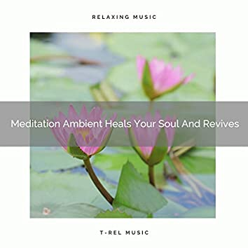 Meditation Ambient Heals Your Soul And Revives