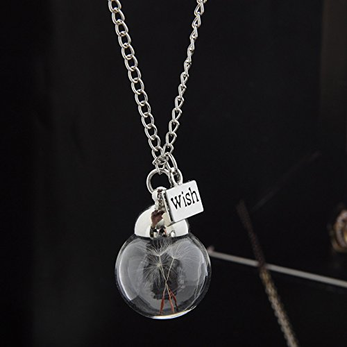 Glass Bottle Necklace Natural Dandelion Seed In Glass Necklace Make A Wish...