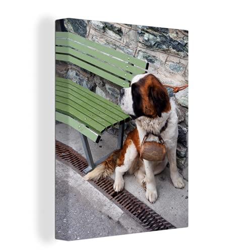 Leinwandbild - Bernhardiner-Rettungshund an der Leine - 30x40 cm