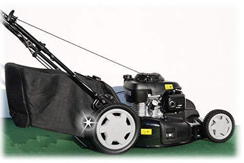 Cortacésped de gasolina con cesta CGV160, de Honda, 53 cm, transmisión variable, con mantillo