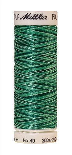 Amann-Mettler Poly Sheen Multicolor-Nähgarn mit Farbverlauf in 23 Farben, 200 Meter, Polyester | zum dekorativen Nähen, für Overlock, für Quilt- & Stickarbeiten (9931 - Minty Leaves)