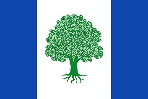 magFlags Bandera Large Rectangular de Proporciones 2 3, formada por Tres Franjas Verticales | Bandera Paisaje | 1.35m² | 90x150cm
