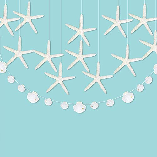 Cheerland Flat Paper White Finger Starfish Sea Shell Garland Kit Ocean Coastal Nautical Party Decoration Starfish Cutouts Hanging Bunting Banner Under The Sea Mermaid Birthday Beach Wedding aby Shower