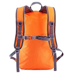 Venture Pal Lightweight Packable Durable Travel Hiking Backpack Daypack (Orange)