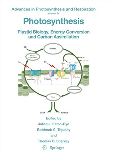 Photosynthesis: Plastid Biology, Energy Conversion and Carbon Assimilation (Advances in Photosynthesis and Respiration (34), Band 34)