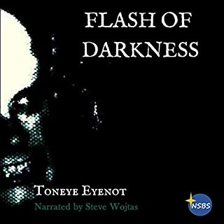 Flash of Darkness audiobook cover art