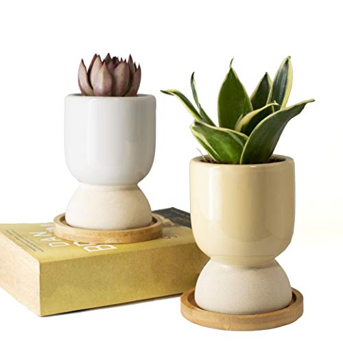 GRÜNBLISS Small Ceramic Planter with Drainage - 3 inch Simple Home Pots with Bamboo Tray - Pot Set of 2 - Planters for Succulents, Cactus, Snake Plant, Bonsai Tree - Plant Accessories Indoor & Outdoor