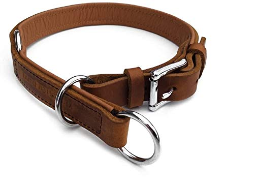 hund-natuerlich Zugstopp Lederhalsband für Hunde Hellbraun Cognac gefüttert Chrom, Leder Hundehalsband (60 (Halsumfang 52cm - 56cm))