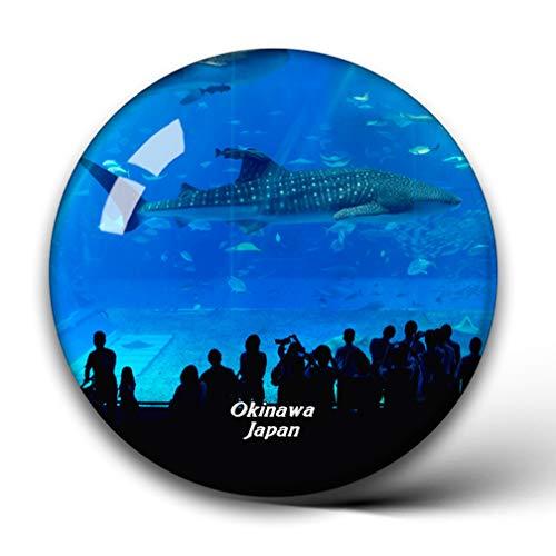 Jollin Churaumi Aquarium Okinawa Japan Kühlschrankmagnete Kristallglas für Kühlschrank Aufkleber City Travel Souvenirs Whiteboard Home Deco Geschenke