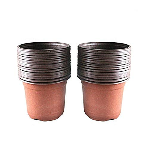 small plastic plant containers - 5