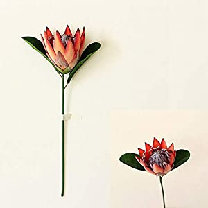YAWAN 1pc Artificial Silk Flower King Protea Fake Emperor Flowers for DIY Flower Arrangement Home Party Wedding Table Decoration(Orange)
