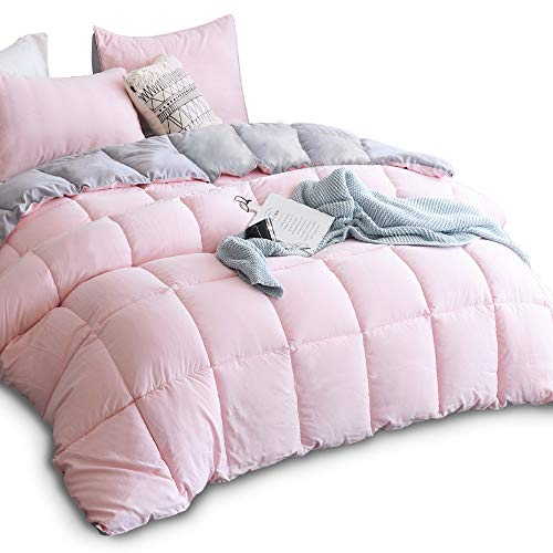 KASENTEX All Season Down Alternative Quilted Comforter Twin Only $23.49 (Retail $46.99)