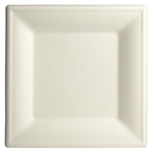 """Brheez 10"""" Elegant Heavy Duty Square Plates 100% Natural Sugarcane Bagasse, Biodegradable and Compostable - Pack of 110"""