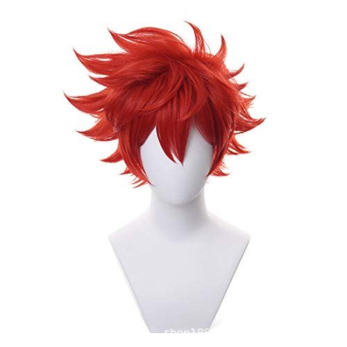 Sk8 The Infinity Miya Reki Langa Anime Cosplay Short Wig, Black Short Curly Party Hair Halloween Accessory Women Girls