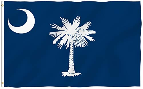 Anley Fly Breeze 3x5 Foot South Carolina State Polyester Flag - Vivid Color and UV Fade Resistant - Canvas Header and Double Stitched - South Carolina SC Flags with Brass Grommets 3 X 5 Ft