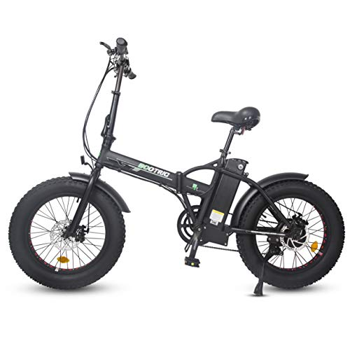 Ecotric 20 Electric Bike