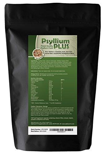 Psyllium PLUS Feinste Qualität Psylliumschale Plus Inulin Aloe Vera Glucomannan Fenchelsamen Sanddorn Probiotischer Lactobacillus Acidophilus - 120 Kapseln - Neue 1 A Tagesformel - 4 Monate Versorgung